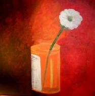 "Cured: Acrylic on Canvas: 16""x16"" 2008"